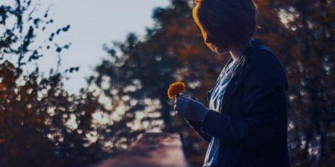 Nuestros sentidos afectan a nuestras emociones